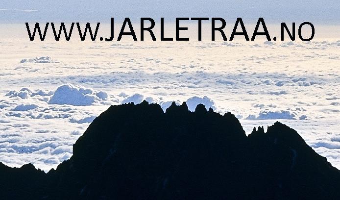 Jarle Traa logo